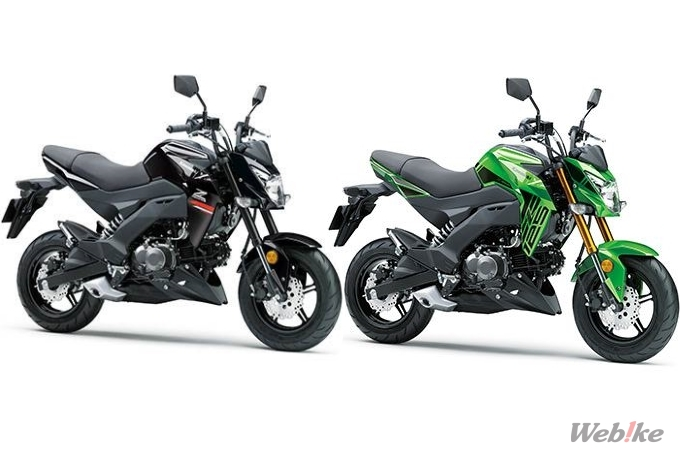 New Motorcycle Kawasaki Z125 Pro Released From January 15 2019